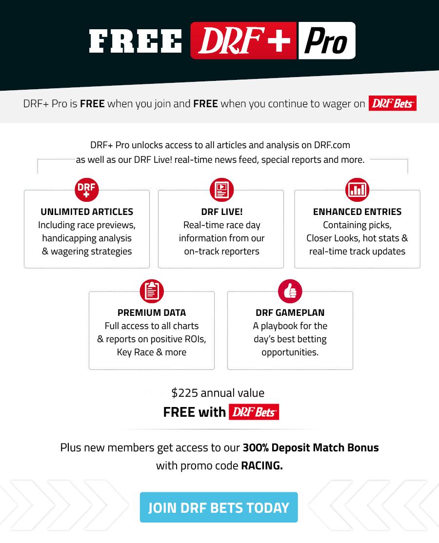 Register for DRF Plus