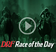 Race of the Day