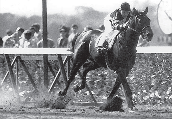 Image result for war admiral wins kentucky derby